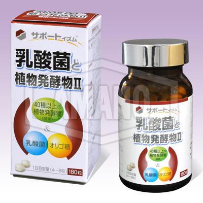 サポートイズム 乳酸菌と植物発酵物Ⅱ